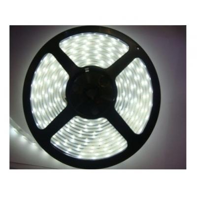 LED pásek 10W/m 12V CRI80 IP65