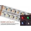 LED pásek 20W 24V RGBW IP20
