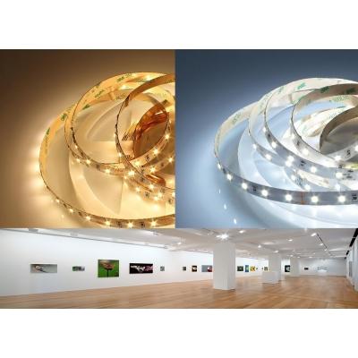 LED pásek 13W/m 12V CRI98 IP20