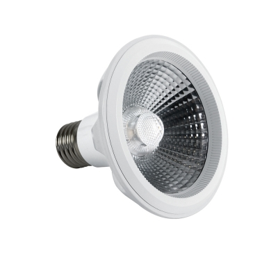 LED žárovka PAR30 10W E27