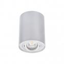 Přisazené svítidlo BORD DLP-50 stříbrná