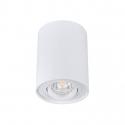 Přisazené svítidlo BORD DLP-50 bílá