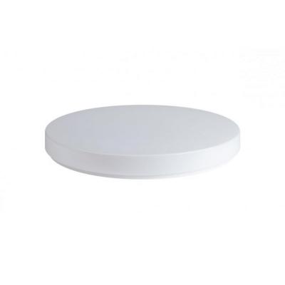LED stropní svítidlo DELIA 1 LED 20W